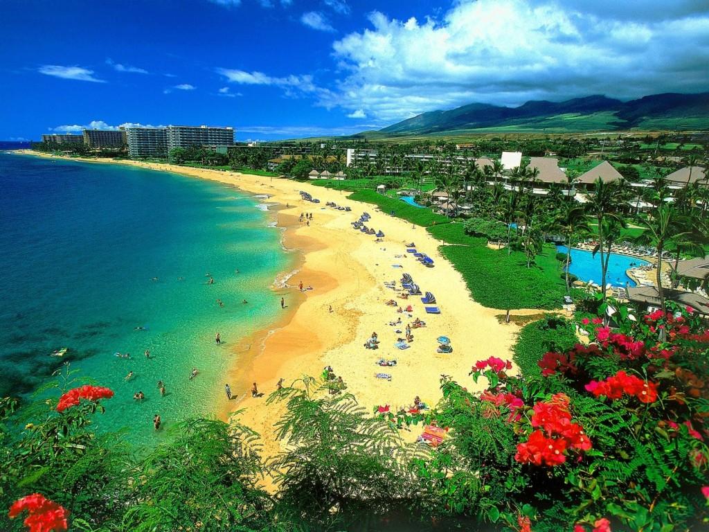 Beautiful Place - Beach